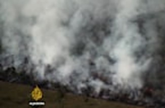 Drug dealers blamed for Guatemala national park's fires