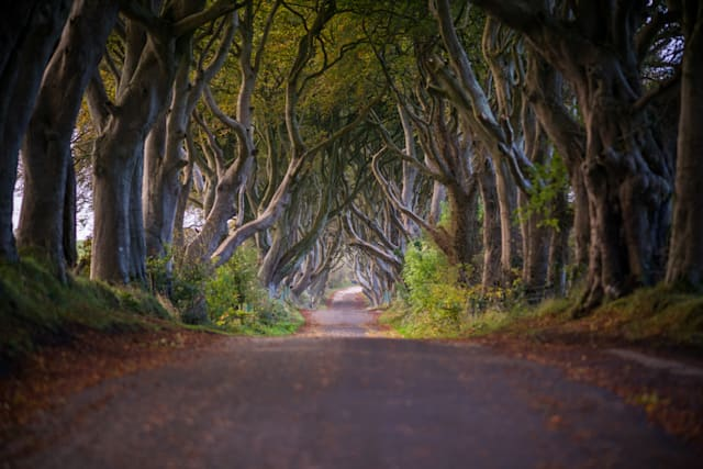 Beautiful British road trip routes