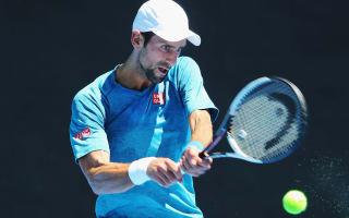 Djokovic handed Verdasco opener, Federer to face qualifier