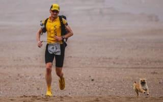 Stray dog accompanies runner in gruelling Gobi Desert race