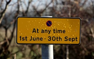 Local council goes mad with 'no parking' signs