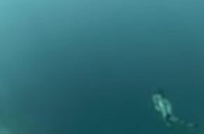 Dean's Blue Hole is One of Deepest
