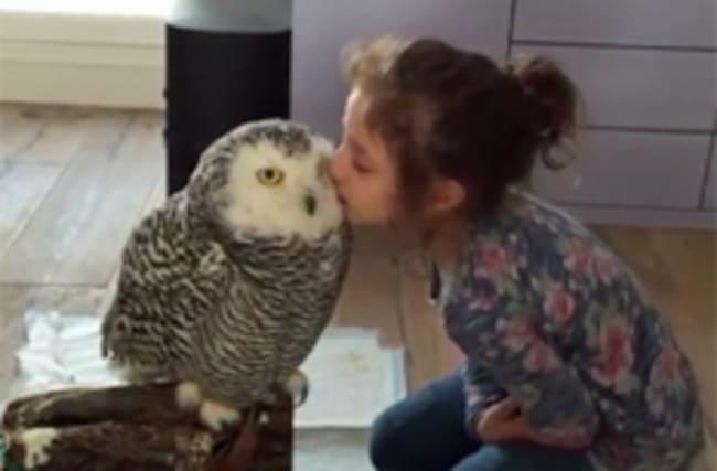 Girl getting owl kisses is a Harry Potter fan's dream