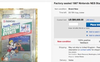 Computer game on eBay for almost $100,000