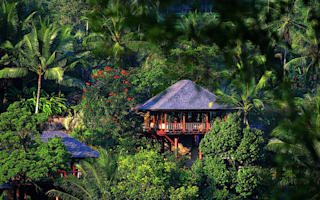 World's best jungle retreats