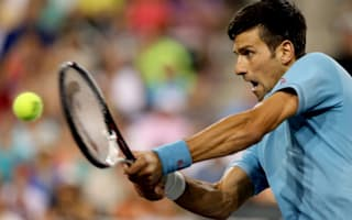 Djokovic battles past Del Potro