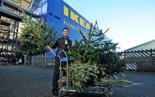 Where can you buy a Christmas tree for £1?