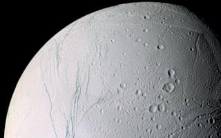 Saturn's moon Enceladus holds 'three of four requirements' for life to exist
