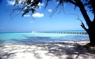 Cruise passenger goes missing off ship in Cayman Islands