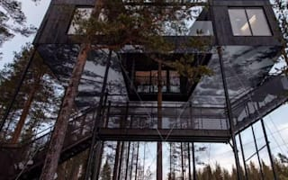 Spectacular tree house gives great views of the Northern Lights