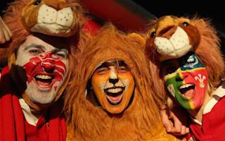 Adopt a Lion: Kiwis urged to open homes for touring fans