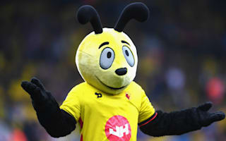 Waspish Big Sam has bee in his bonnet over Harry the Hornet