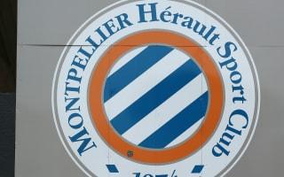 Montpellier appoint Der Zakaria as coach