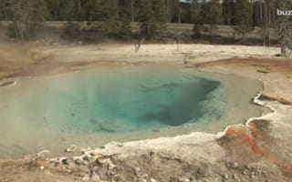 Alien life discovered at Yellowstone National Park
