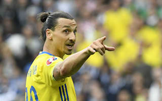 Ibrahimovic talk is not destabilising Sweden - Hamren