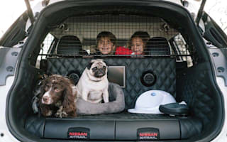 Nissan builds concept SUV specifically for dog lovers