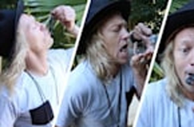 The Dudesons: This Dude Gets Stung By A Scorpion!