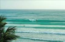 Zed's Surfing Adventures