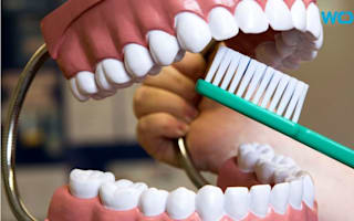 New drug treatment may help teeth repair themselves