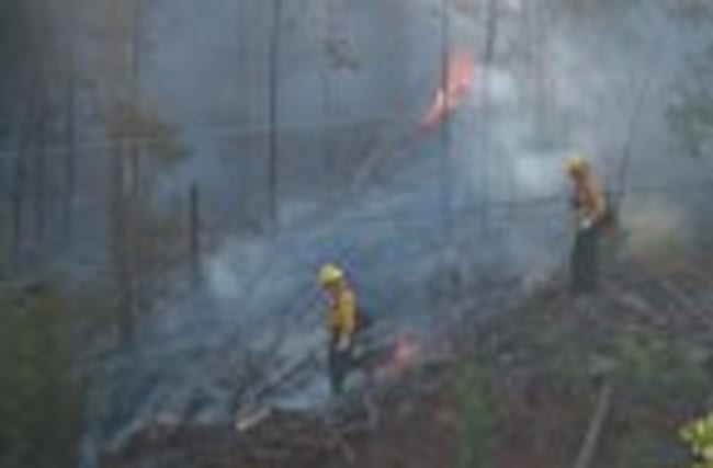 Fierce wildfires blaze across western U.S.
