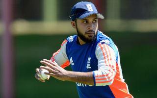 Collingwood tips Rashid to take World T20 'by storm'