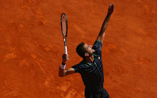 Cilic ousts holder Schwartzman to reach Raonic decider