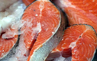 Farm salmon 'should be sterilised'