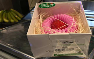 Is this the most expensive strawberry in the world?