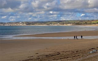 Family seeks justice after pet dog poisoned on Cornwall beach