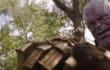 ¿Aún no lo viste? 'Avengers: Infinity War' tiene nuevo tráiler y es brutal