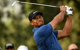 Woods injury a spasm, not nerve pain - agent