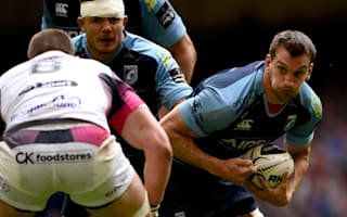 Warburton expected to face All Blacks