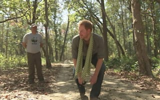 Harry earns his stripes with tiger impression in Nepal national park