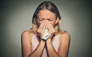 How to stop a cold in its tracks