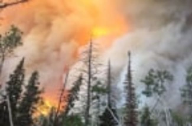 Massive Utah wildfire scorches 40,000 acres