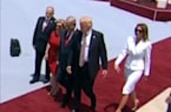 The Melania swat, or is it?