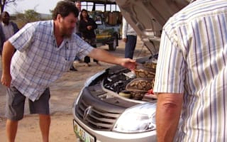 Couple finds huge snake in car on holiday in South Africa