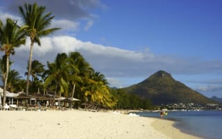 British teen drowns while swimming with dolphins in Mauritius