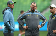 Grey to move into permanent Wallabies role