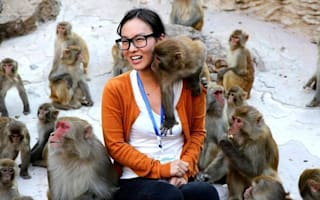 Cheeky monkey! Macaque grabs female tourist's breast