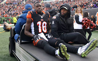 Bengals lose Green to hamstring injury