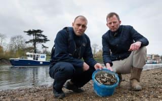 River Thames warning as 500 razor blades found dumped