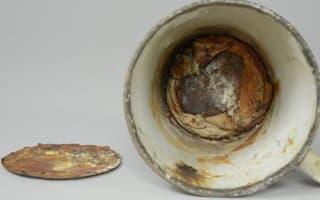Auschwitz museum's amazing discovery