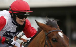 Pendleton boosts Cheltenham chances with maiden win