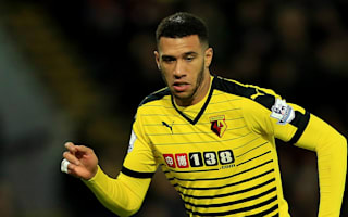 Capoue a new player after Tottenham struggles, insists Flores