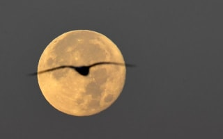 British weather ruined our view of the supermoon, so we made our own fun