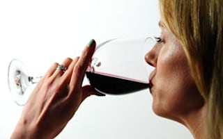 Can you guess which wine is more expensive?