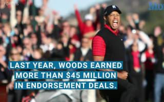Tiger Woods earnings were down 50% before arrest