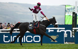 Gold Cup winner Don Cossack retired