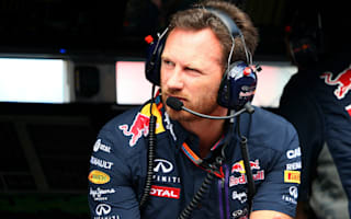 Red Bull's Horner backs Halo delay